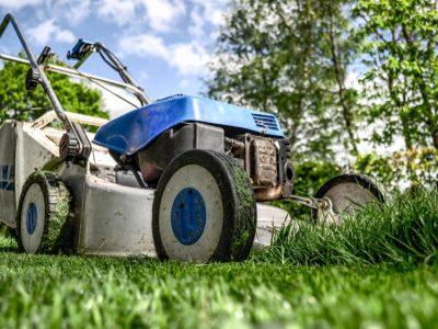 garden-gardening-grass-589-767x509@2x
